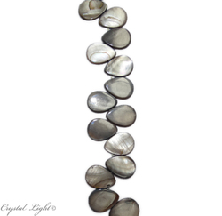 Shell and Pearl Beads: Shell Beads